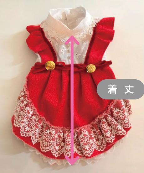 ※在庫限り終了※【 Raspberry Sweet】ラズベリースゥイート  ( Sサイズ)