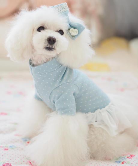 ※ご予約可能※ Mサイズ【 AngelicMoon Chambre】Azul  BeBe(ミエルべべ)