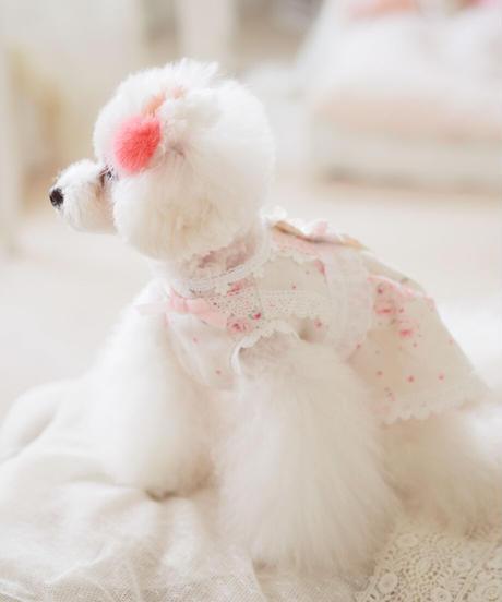 ※在庫限りで終了※Mサイズ【Botanical Love】Pink Baby Rosy  (ピンクベイビーロージー)