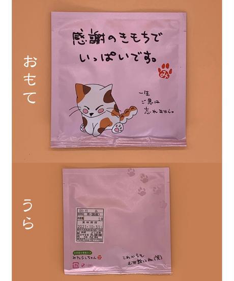 猫ドリップ煎茶【10Pセット】