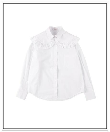 design collar blouse