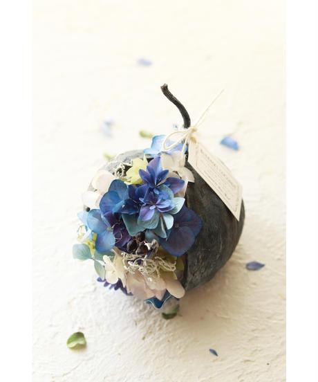 ブッダナッツの紫陽花アレンジメント/ルミエールドライフラワー /ハナトッツォ BN-03
