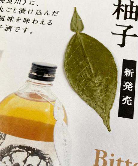 ' 【新発売】丸ごと柚子酒 500ml