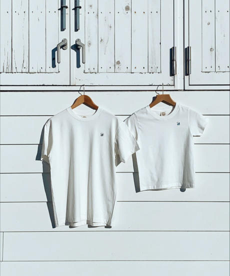 ティーシャツ