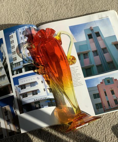 [USED] Flower Vase 59