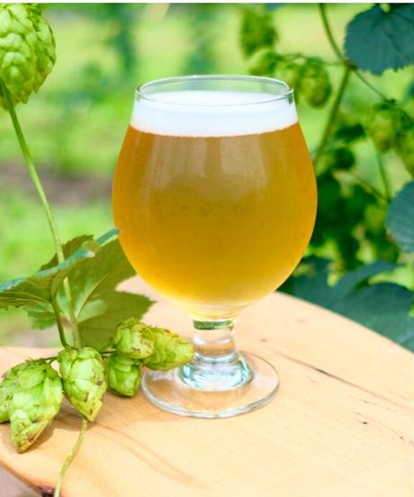【自家栽培ホップのビール入り】淡色3種飲み比べセット