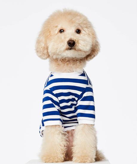 Breton t-shirt stripe