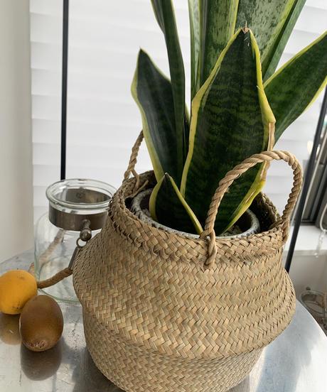 Seagrass Chillax Belly Basket