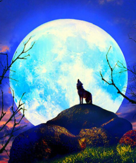 ラウンドビーズ ダイヤモンドアート 40×50cm 中型 幻想的 満月 アニマルデザイン 夜景 作成キット