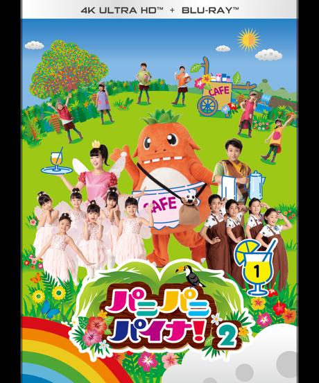 【4KUHD + Blu-ray】パニパニパイナ!2Vol.1