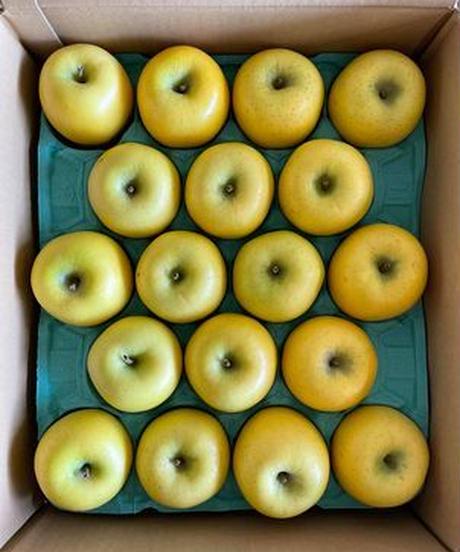 釈迦のりんご園「スマートフレッシュ貯蔵」シナノゴールド1玉