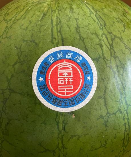 奈良県産スイカ 富研号 <復刻版> 1玉