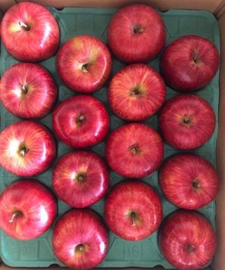 【予約販売・ご予約締切10月10日ごろ】釈迦のりんご園<直送>シナノスイート 特選5キロ 16玉