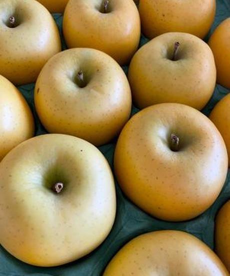 釈迦のりんご園<直送>「スマートフレッシュ貯蔵」シナノゴールド 5キロ 18玉