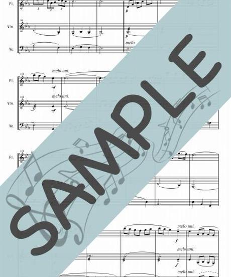 SP-FVC009-01 ノクターン第2番 作品9-2/ショパン:管弦楽三重奏(フルート、ヴァイオリン、チェロ)