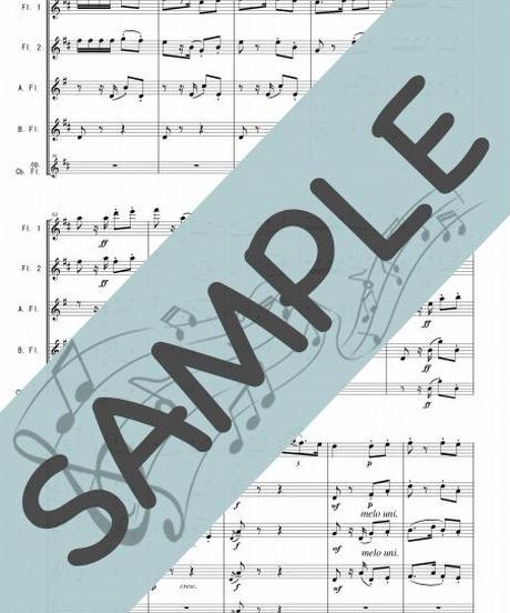 SP-FQG029-01 ハバネラ「カルメン」組曲第2番より/ビゼー:フルート四重奏(2Flutes,Alto-Flute,Bass-Flute/op.+Contrabass-flute)