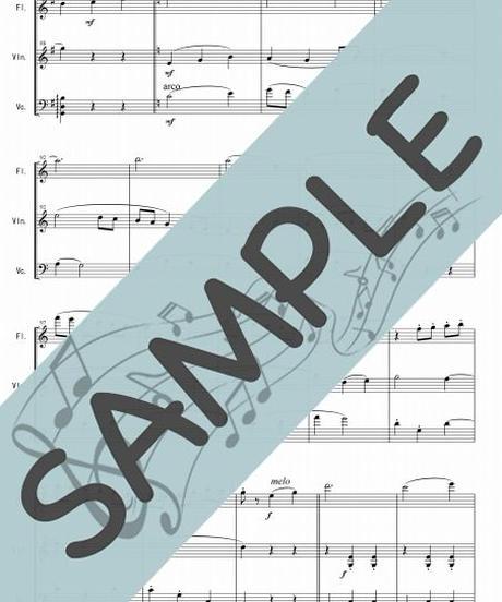 SP-FVC004-01 ジュ・トゥ・ヴ/サティ:管弦楽三重奏(フルート、ヴァイオリン、チェロ)
