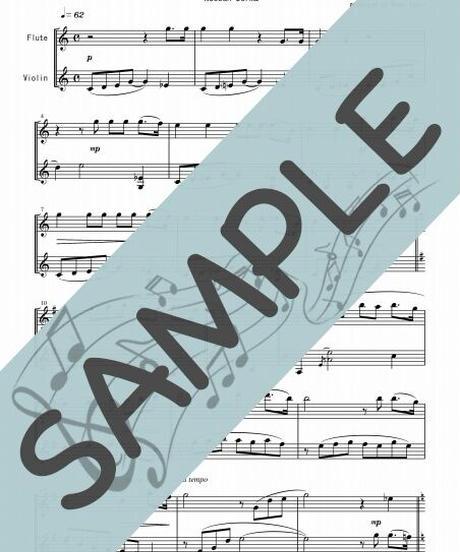 SP-SET005-01 クラシック名曲5曲セット(FV017~FV021):フルート&バイオリン