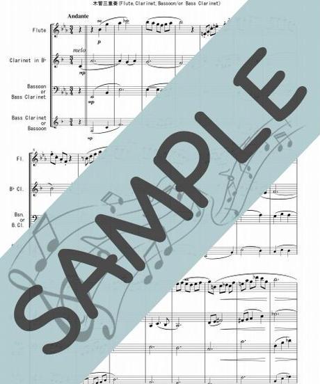 SP-WT002-01 ノクターン第2番 作品9-2/ショパン:木管三重奏(Flute,Clarinet,Bassoon/or Bass Clarinet)