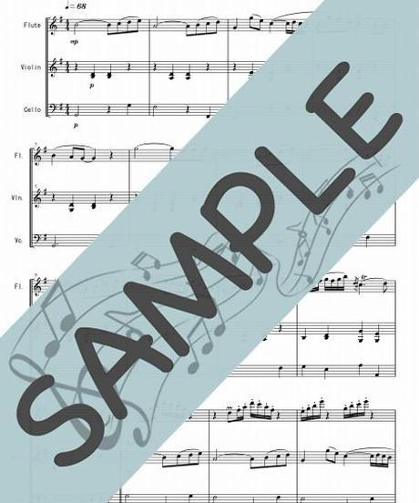 SP-FVC002-01 アリオーソ/J.S.バッハ:管弦楽三重奏(フルート、バイオリン、チェロ)