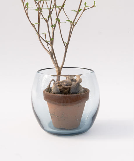 SWELL POT COVER S (Recycled Glass)