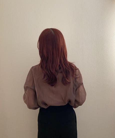 see-through high neck blouse