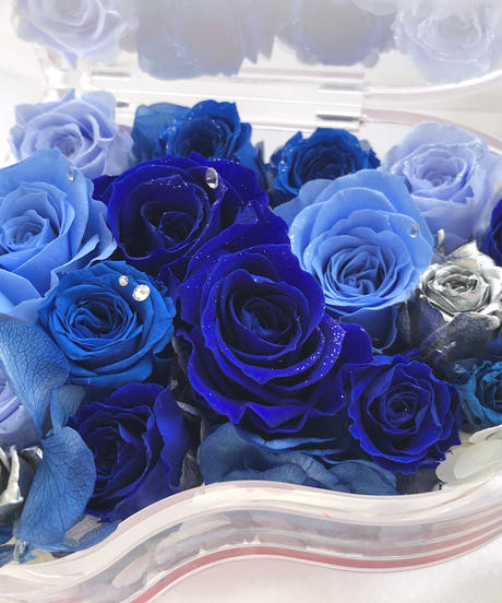 【プリザーブドフラワー/グランドピアノシリーズ】青とブルーローズとシルバーの輝きに夢をこめて(フラワーケース付き】