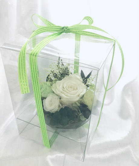 プリザーブドフラワー/白い薔薇とグリーンとハーバリウム花器コラボアレンジ(フラワーケースリボンラッピング付き)1個限定