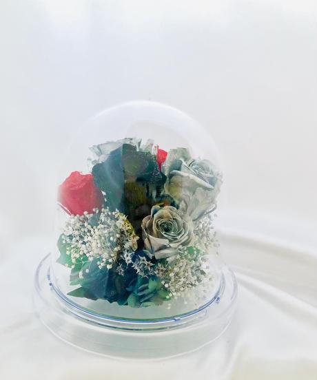 プリザーブドフラワー/ドームの中に咲くシルバーローズの魔法