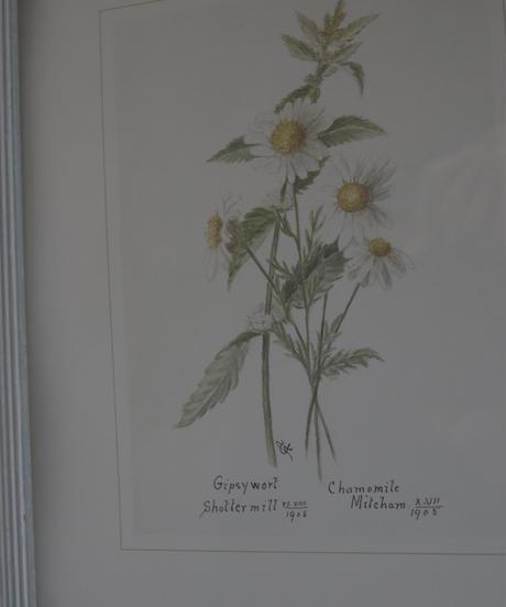 """VTG wall art frame """"chamomile"""""""