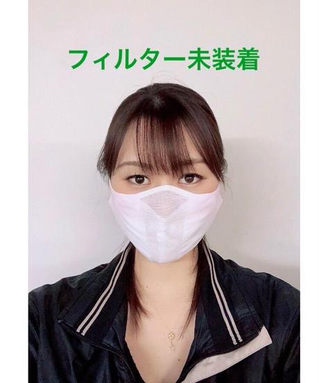 剣道(武道用)面マスク《極》