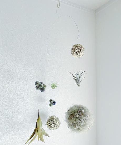 〜浮遊する植物〜 ボタニカル・モビール
