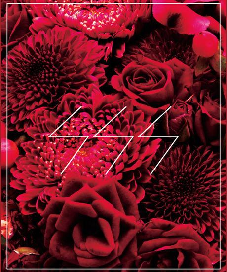 SSS FLOWER 011' featuring gouache. Vo.type-MEG.ME