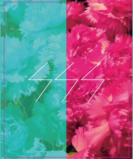 SSS FLOWER 017' featuring DOG MONSTER