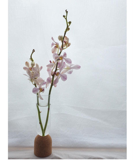 Flower vase with a flower