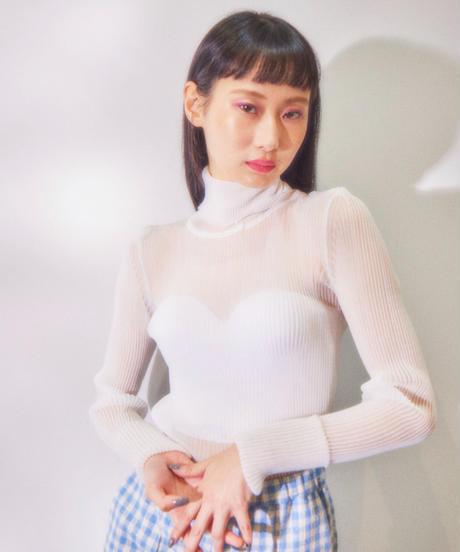 sheer rib turtleneck knit WHITE