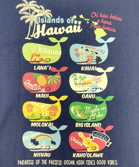 ハワイアン柄Tシャツ ネイビー/トロピカルクジラ (メンズサイズ)バック プリント
