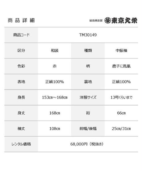 [レンタル] 中振袖 TM30149