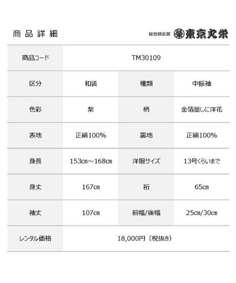 [レンタル] 中振袖 TM30109