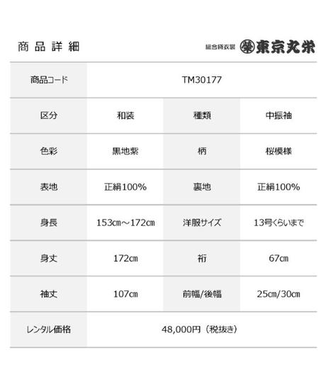 [レンタル] 中振袖 TM30177