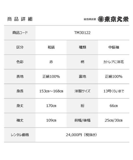 [レンタル] 中振袖 TM30122