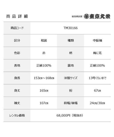 [レンタル] 中振袖 TM30166