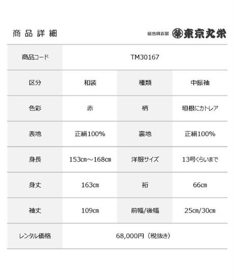 [レンタル] 中振袖 TM30167