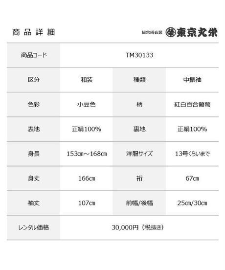 [レンタル] 中振袖 TM30133