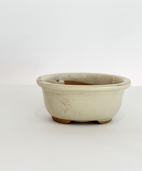豆盆栽鉢 楕円