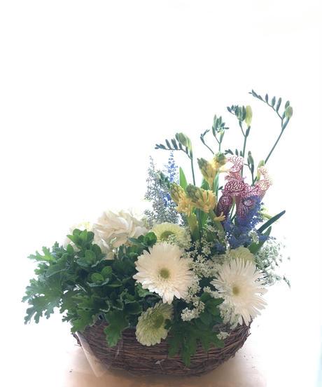 お祝い花アレンジメント/ ブーケ 8000円