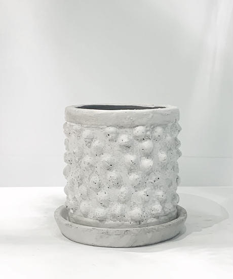 【鉢】conch antique white pot φ15