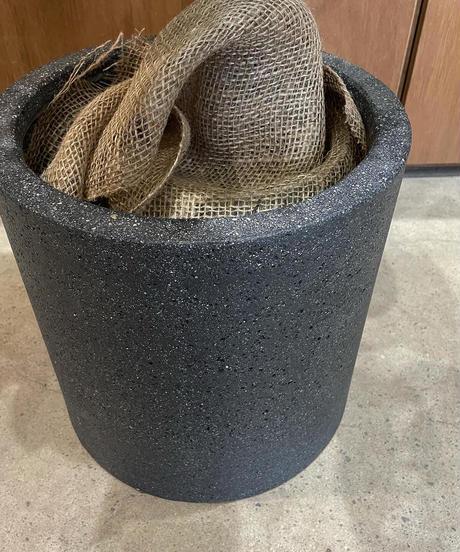 【観葉植物】フィカス・アルテシマ / stone skin black pot