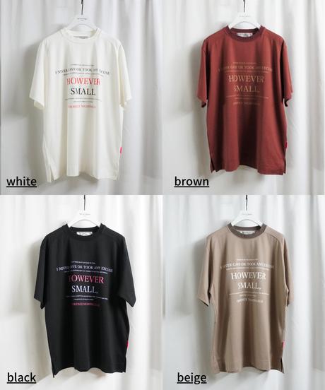 BIG T-shirt  hawever small【2213856】