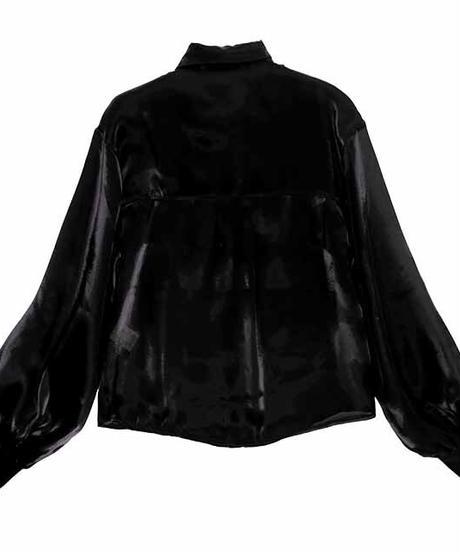 LISTEN FLAVOR 2110403 バラ刺繍ボリュームスリーブシースルーシャツ